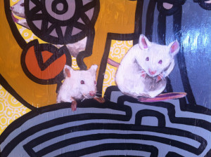 Mice Closeup 2