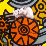 Mice Clock closeup 2